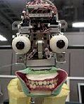Squelette du visage de Repliee R1 © Intelligent Robotic Laboratory